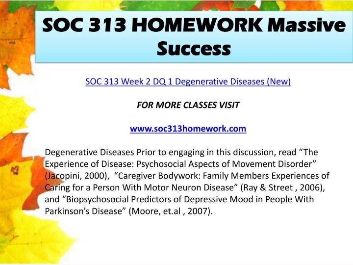 SOC 313 HOMEWORK Massive Success