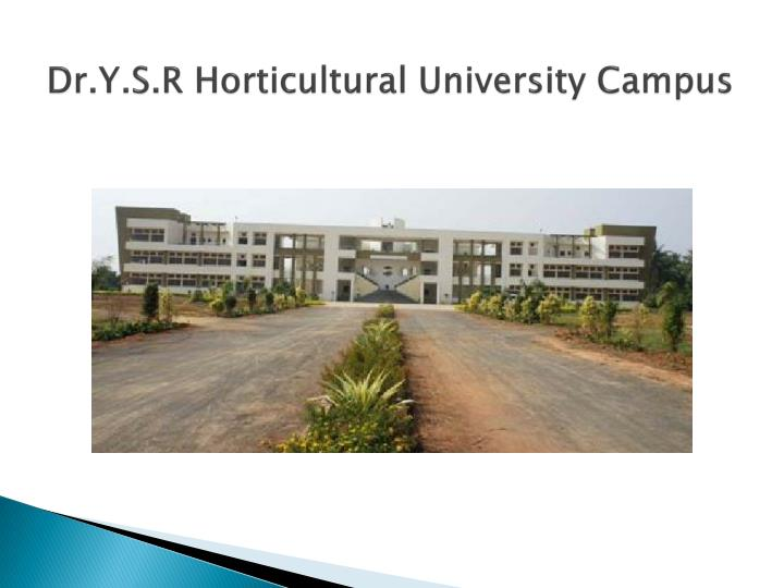 Dr y s r horticultural university campus