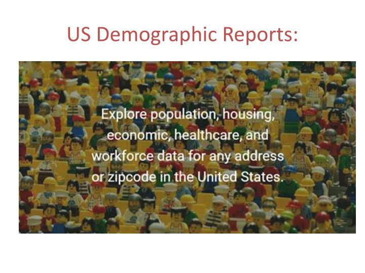 US Demographic Reports: