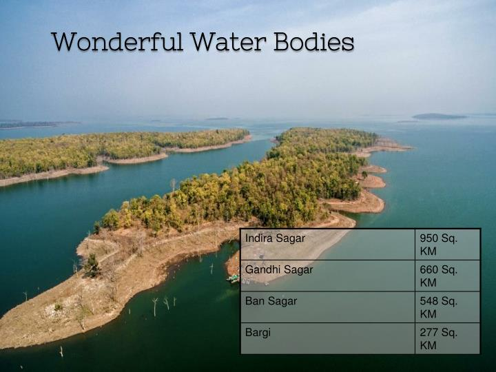 Wonderful Water Bodies