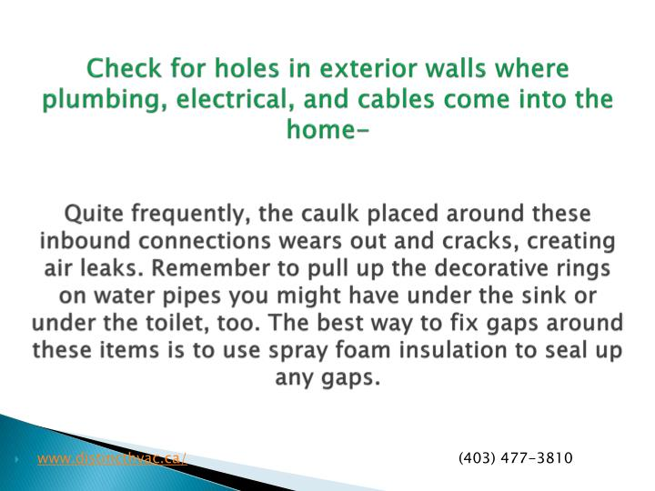 Check for holes in exterior walls where plumbing, electrical, and cables come into the