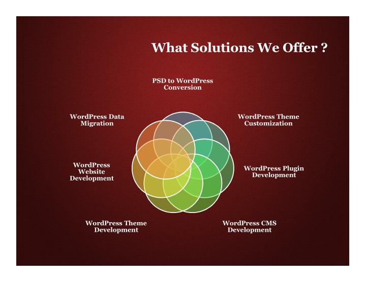 What Solutions We Offer ?