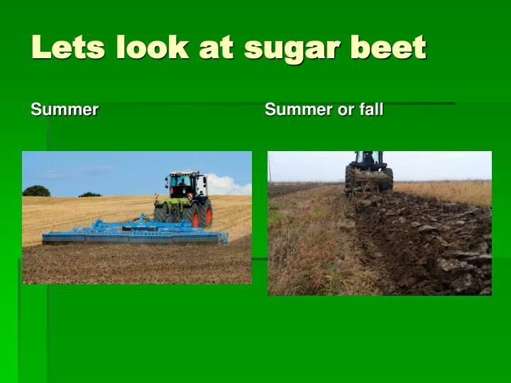 Lets look at sugar beet