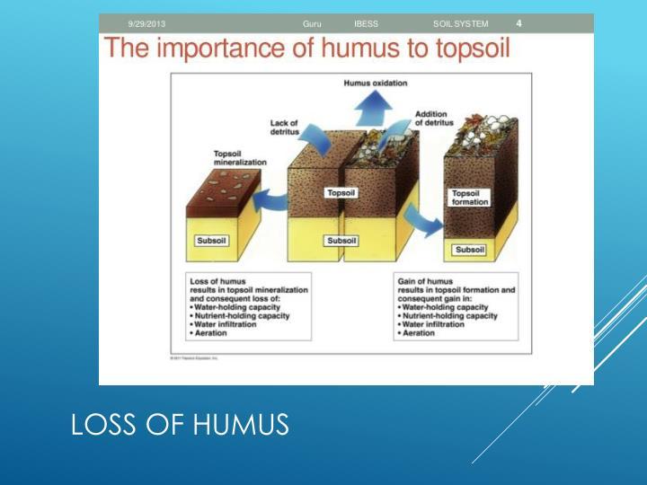 Loss of Humus