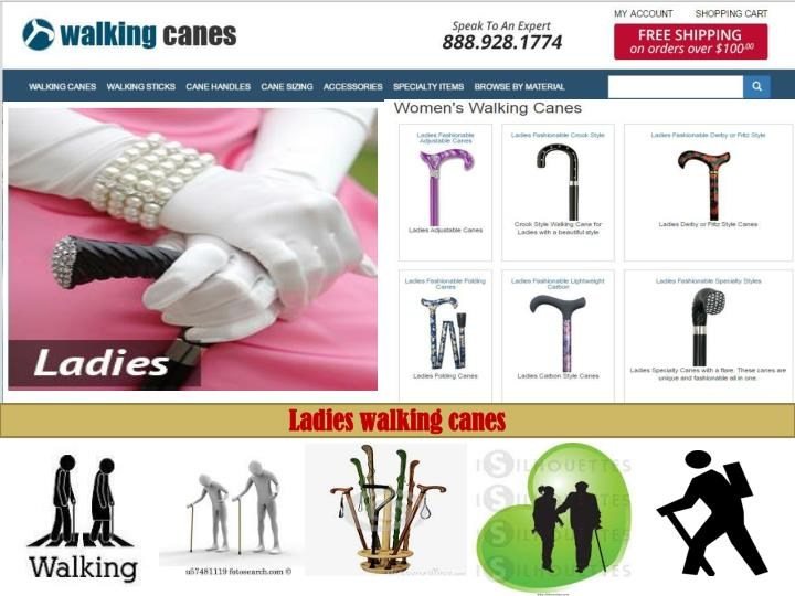 Www.walking-canes.net