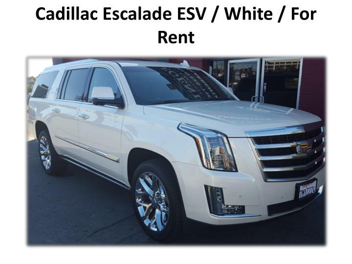 Cadillac Escalade ESV / White / For Rent