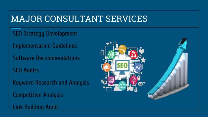 MAJOR CONSULTANT SERVICES