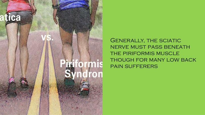 Generally, the sciatic nerve must pass beneath the piriformis muscle though for many low back pain sufferers