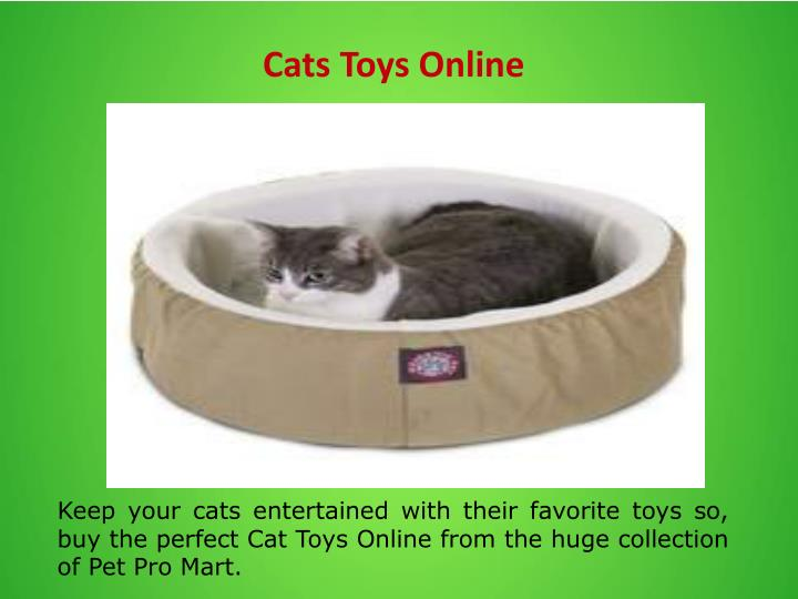 Cats Toys Online