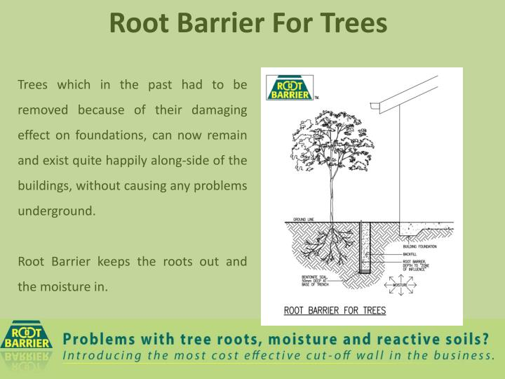 Trees which in the past had to be removed because of their damaging effect on foundations, can now remain and exist quite happily along-side of the buildings, without causing any problems underground.
