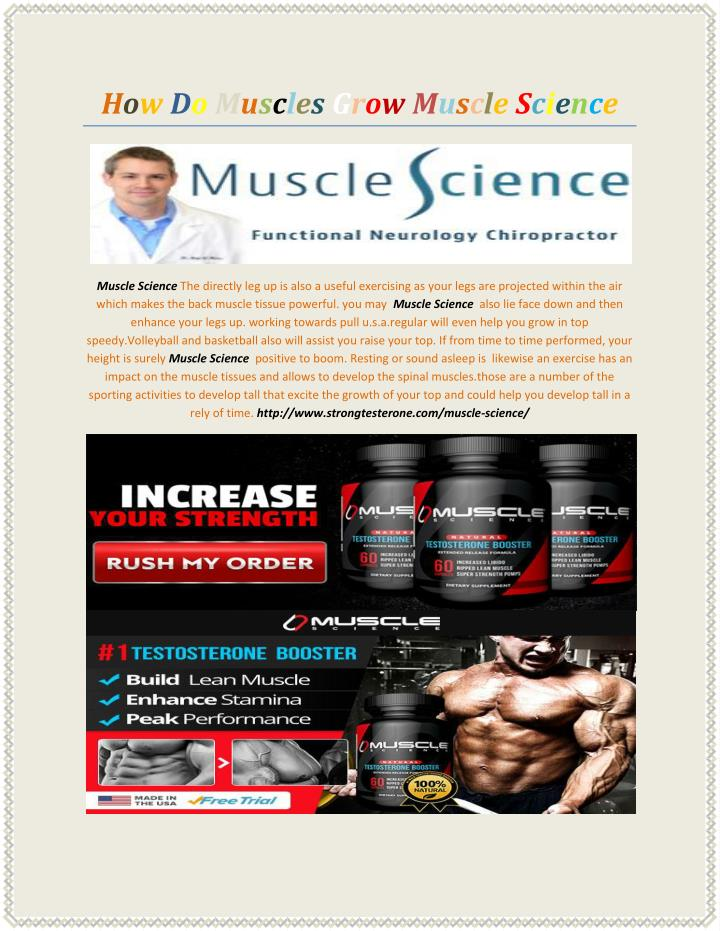 How Do Muscles Grow Muscle Science