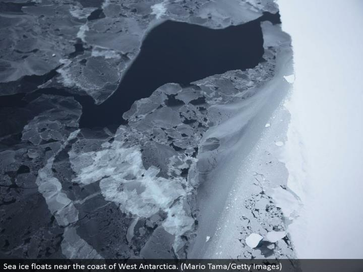 Sea ice drifts close to the bank of West Antarctica. (Mario Tama/Getty Images)