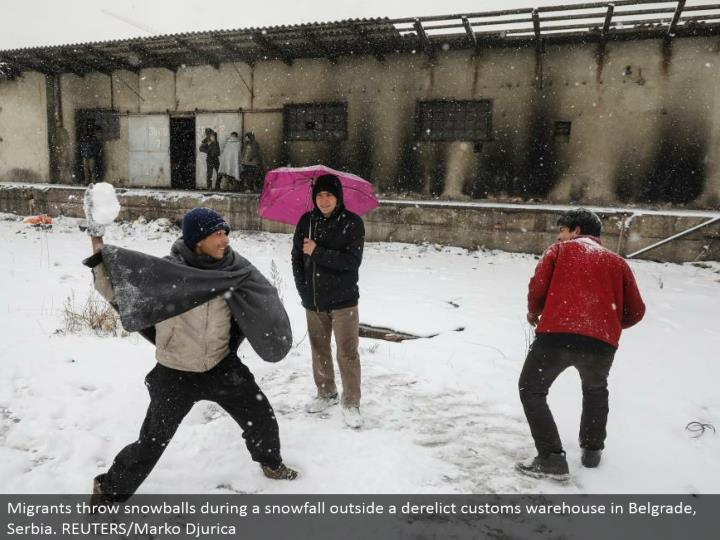 Migrants toss snowballs amid a snowfall outside a neglected traditions distribution center in Belgrade, Serbia. REUTERS/Marko Djurica