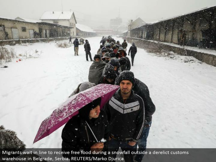 Migrants hold up in line to get free nourishment amid a snowfall outside a forsaken traditions distribution center in Belgrade, Serbia. REUTERS/Marko Djurica