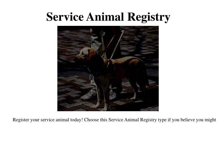 Ppt therapy dog registration powerpoint presentation for Service registry