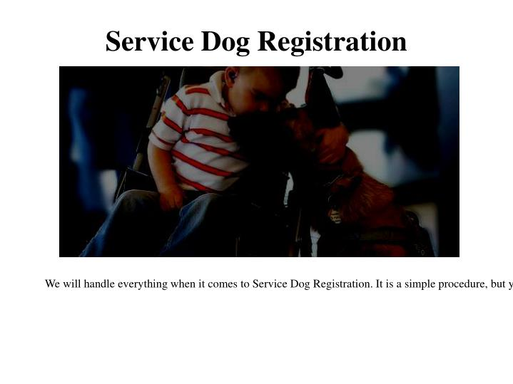 How To Get Your Dog Registered As A Service Animal