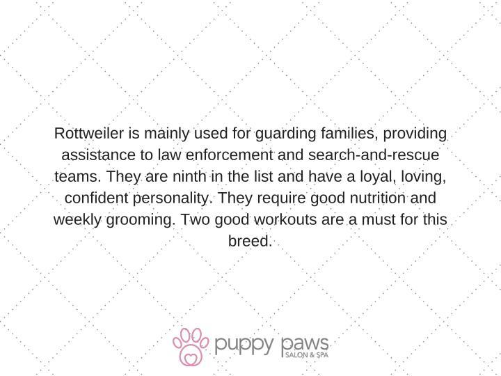 Rottweilerismainlyusedforguardingfamilies,providing