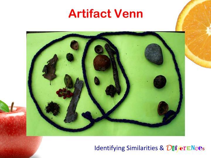Artifact Venn