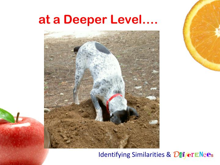 at a Deeper Level….