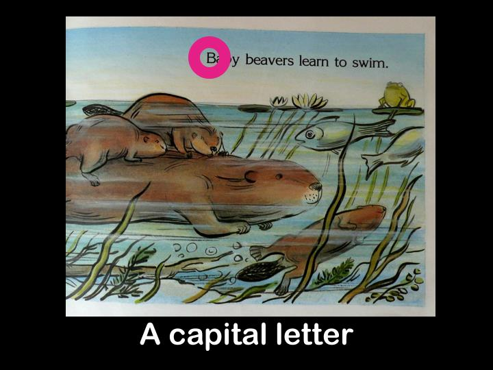 A capital letter