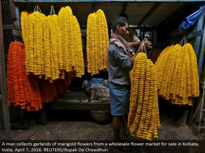 A man gathers wreaths of marigold blossoms from a discount bloom advertise available to be purchased in Kolkata, India, April 7, 2016. REUTERS/Rupak De Chowdhuri