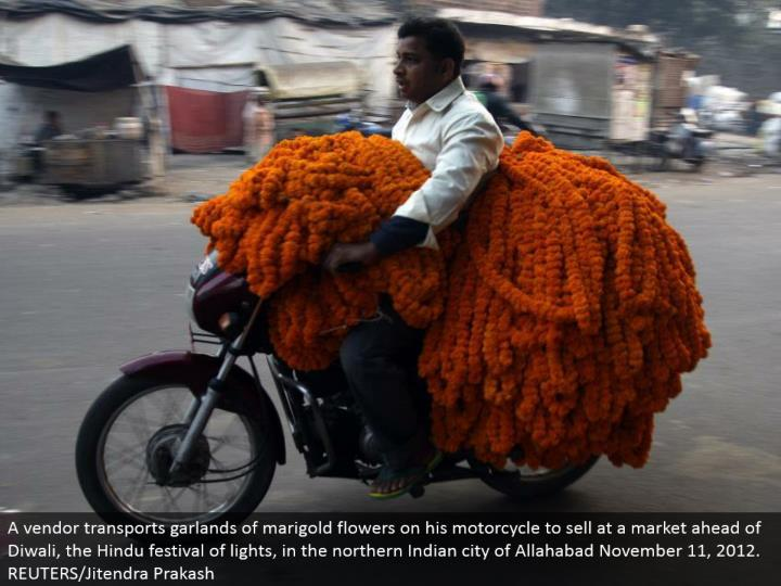 A merchant transports wreaths of marigold blooms on his cruiser to offer at a market in front of Diwali, the Hindu celebration of lights, in the northern Indian city of Allahabad November 11, 2012. REUTERS/Jitendra Prakash