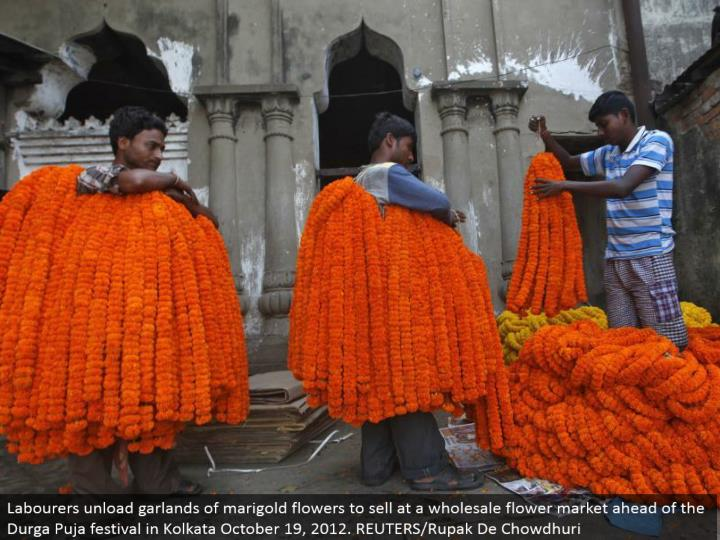 Labourers empty festoons of marigold blooms to offer at a discount blossom showcase in front of the Durga Puja celebration in Kolkata October 19, 2012. REUTERS/Rupak De Chowdhuri