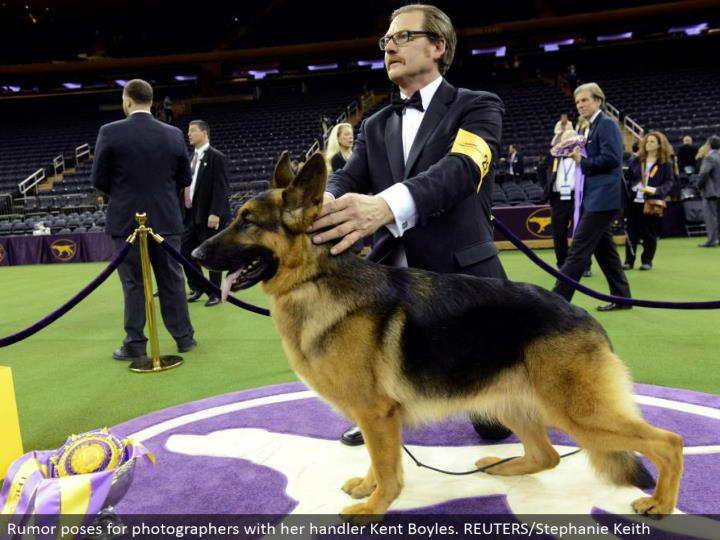 Rumor postures for picture takers with her handler Kent Boyles. REUTERS/Stephanie Keith