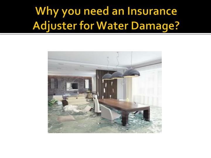 how to become an insurance adjuster