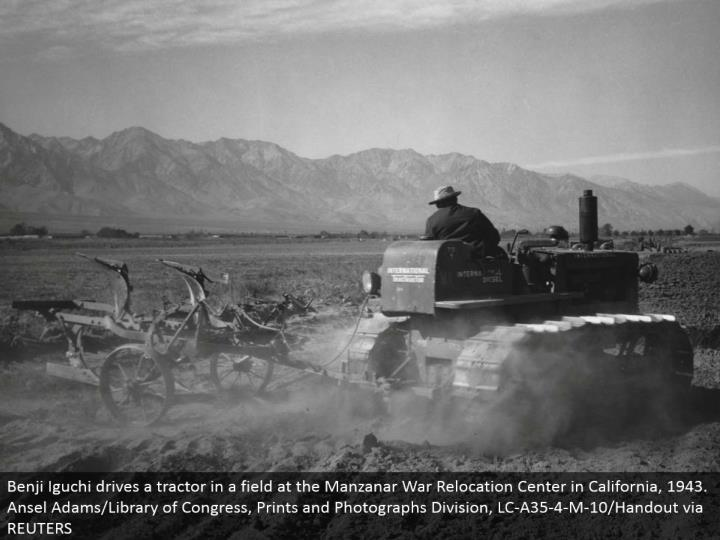 Benji Iguchi drives a tractor in a field at the Manzanar War Relocation Center in California, 1943. Ansel Adams/Library of Congress, Prints and Photographs Division, LC-A35-4-M-10/Handout by means of REUTERS