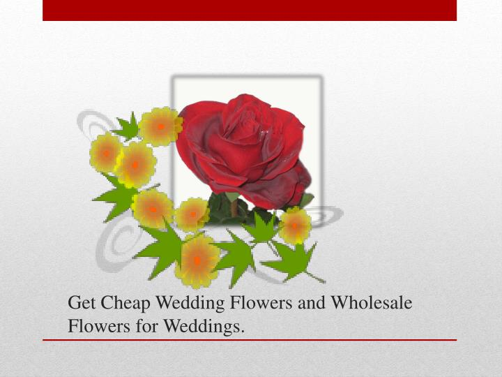 Coupon wholesale flowers coupon bond wikipedia save with these current silk flowers factory coupons for november 2017 provide you a better service and protect the security of our website mightylinksfo