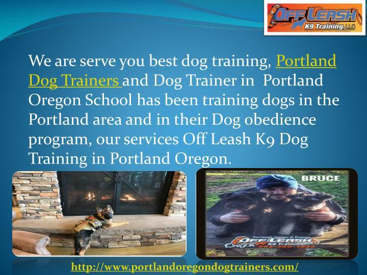 Dog Training School Portland