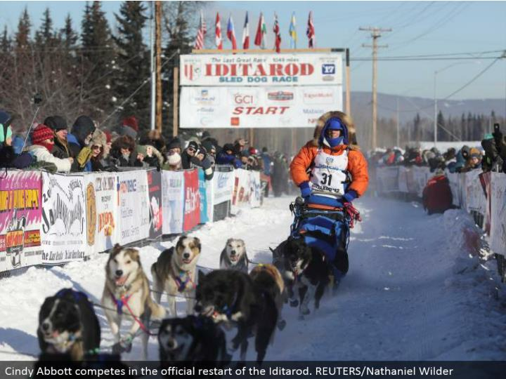 Cindy Abbott contends in the authority restart of the Iditarod. REUTERS/Nathaniel Wilder