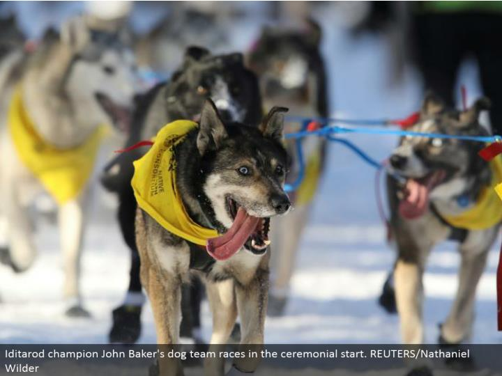 Iditarod champion John Baker's pooch group races in the stately begin. REUTERS/Nathaniel Wilder