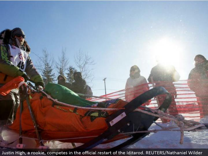 Justin High, a youngster, contends in the authority restart of the Iditarod. REUTERS/Nathaniel Wilder