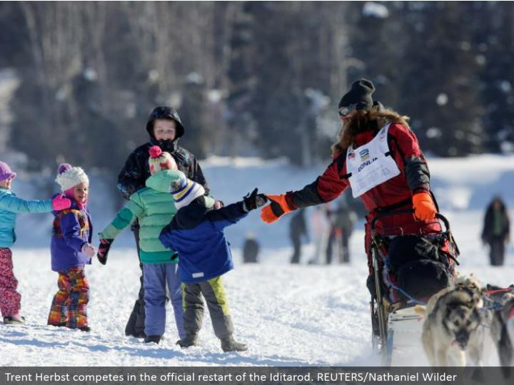 Trent Herbst contends in the authority restart of the Iditarod. REUTERS/Nathaniel Wilder