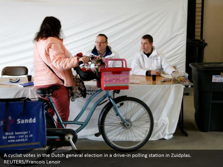 A cyclist votes in the Dutch general decision in a drive-in surveying station in Zuidplas. REUTERS/Francois Lenoir