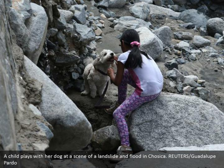 A youngster plays with her puppy at a scene of an avalanche and surge in Chosica. REUTERS/Guadalupe Pardo
