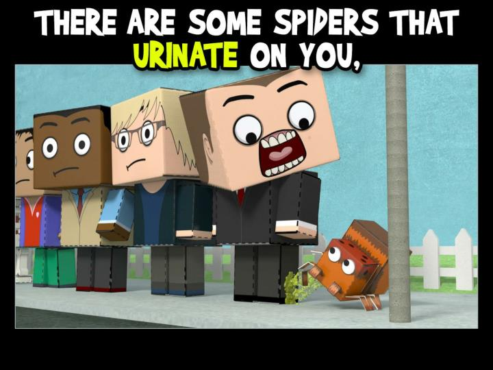 There are some spiders that urinate on you,