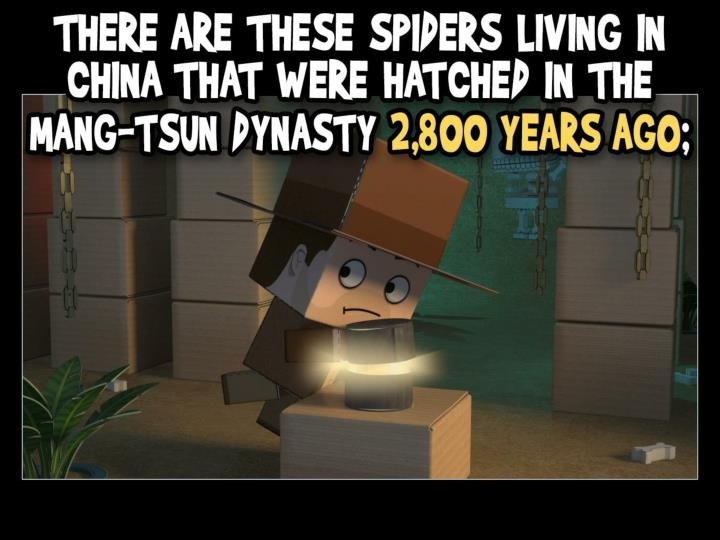 There are these spiders living in China that were hatched in the Mang-Tsun dynasty 2,800 years ago;