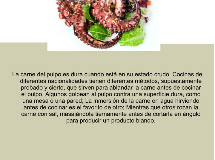 La carne del pulpo es dura cuando está en su estado crudo. Cocinas de