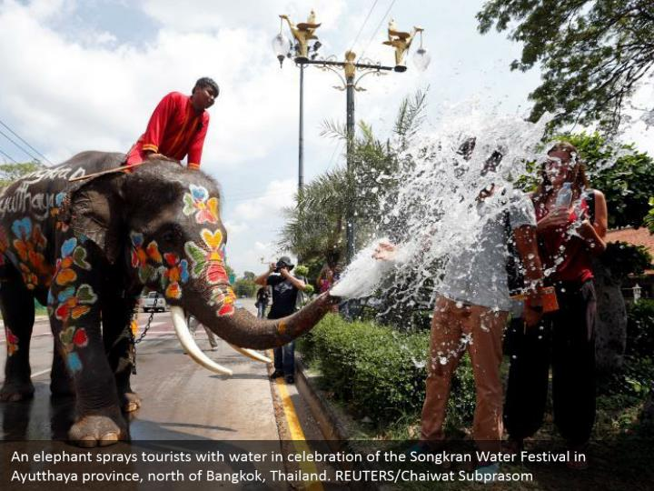 An elephant sprays tourists with water in celebration of the Songkran Water Festival in Ayutthaya province, north of Bangkok, Thailand. REUTERS/Chaiwat Subprasom
