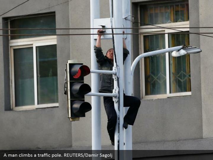A man climbs a traffic pole. REUTERS/Damir Sagolj