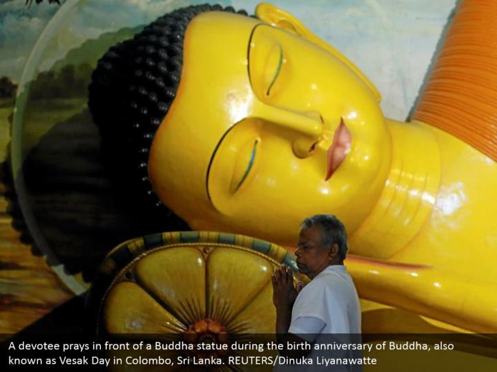 A devotee prays in front of a Buddha statue during the birth anniversary of Buddha, also known as Vesak Day in Colombo, Sri Lanka. REUTERS/Dinuka Liyanawatte