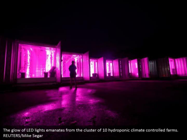 The glow of LED lights emanates from the cluster of 10 hydroponic climate controlled farms. REUTERS/Mike Segar