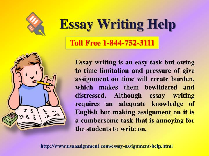 Essay writer helper