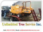 unlimbited tree service inc 2