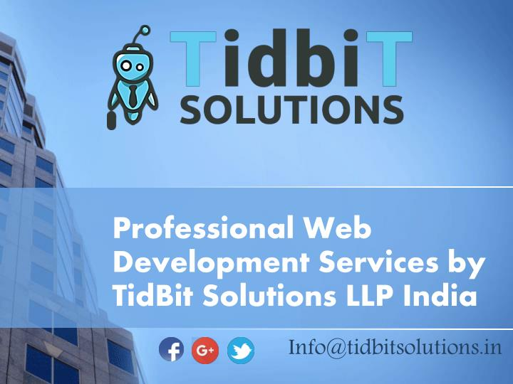 professional web development services by tidbit solutions llp india
