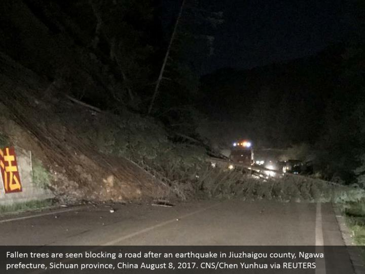 Fallen trees are seen blocking a road after an earthquake in Jiuzhaigou county, Ngawa prefecture, Sichuan province, China August 8, 2017. CNS/Chen Yunhua via REUTERS