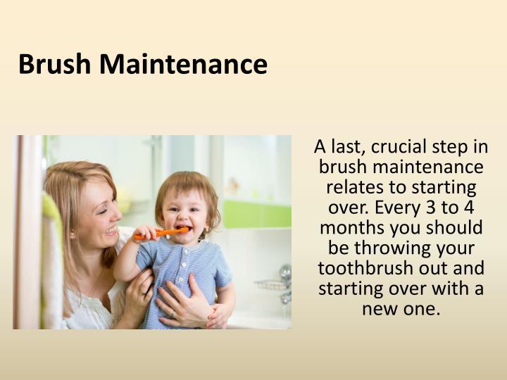 Brush Maintenance